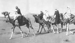 Laperrine leading a platoon of the camel mounted cavalry.
